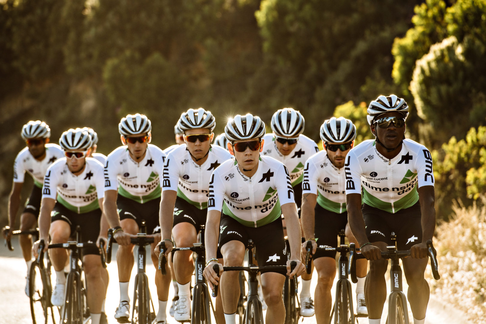PerfilDimension Data