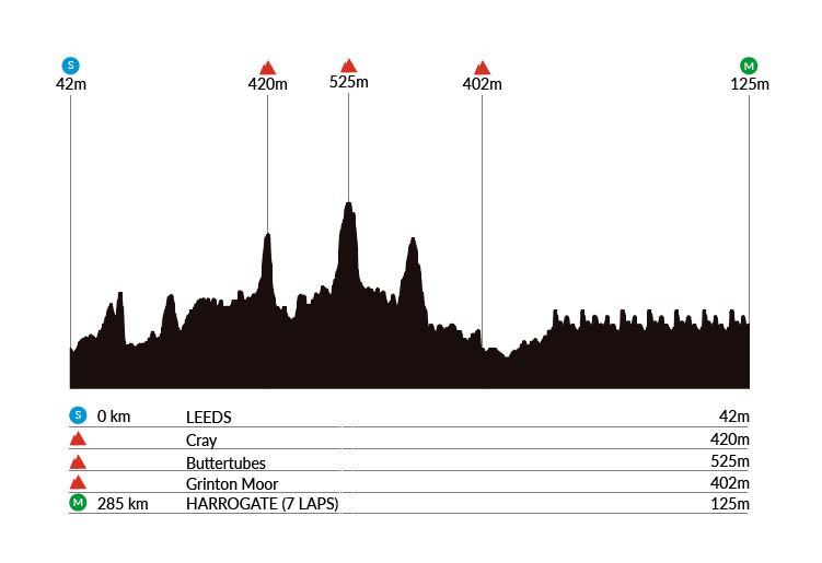 Perfil Mundial Ciclismo 2019 ruta