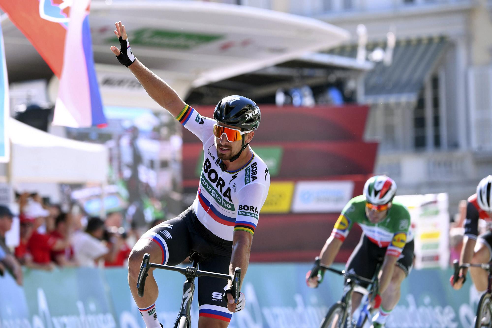 Tour de Suisse 2019 - 83rd Edition - 3rd stage Flamatt - Murten 162,3 km - 17/06/2019 - Peter Sagan (SVK - Bora - Hansgrohe) - photo Vincent Kalut/PN/BettiniPhoto©2019