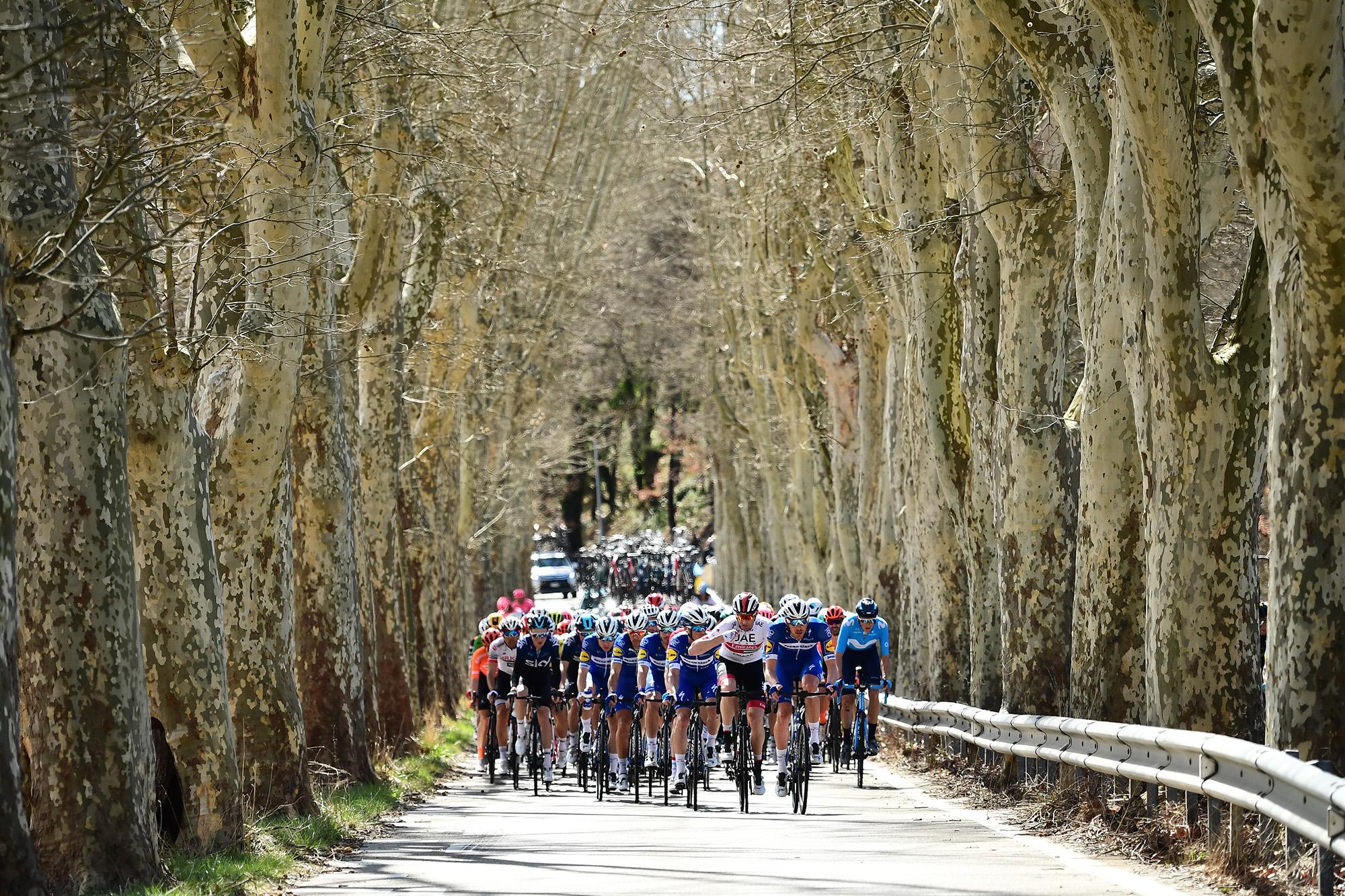 Paris-Nice 2019 - 2019/03/15 - Etape 6 - Peynier / Brignoles (176.5 km) - Peloton scinde en plusieurs groupes